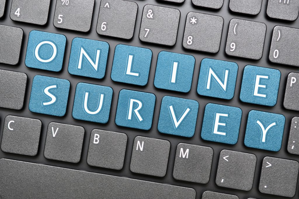 Program and Grant Survey